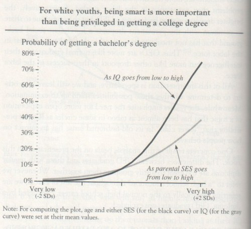 The Bell Curve, 1994, Herrnstein and Murray (graph p. 152)