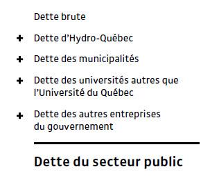 Iris_dette secteur public